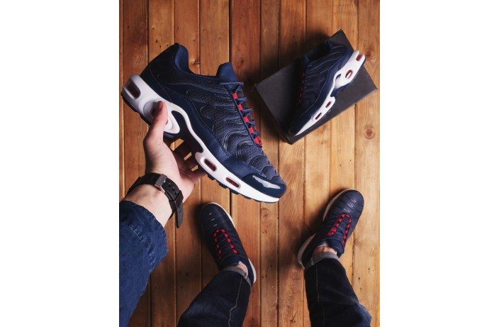 Мужские кроссовки Ривал ТН (синие)